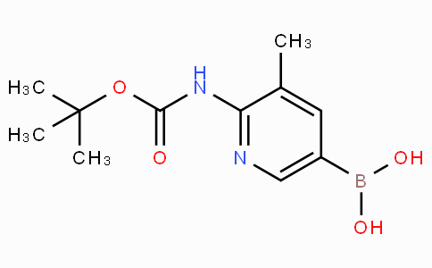 2-tert-Butyloxycarbonylamino-3-methylpyridine-5-boronicacid CAS 1356087-58-5