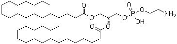 1,2-Distearoyl-sn-glycero-3-phosphoethanolamine CAS 1069-79-0