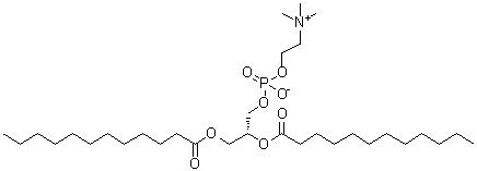 L-alpha-Dilauroylglyceryl-3-phosphorylcholine CAS 18194-25-7