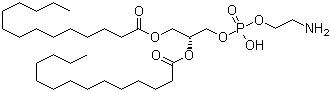 Dimyristoyl phosphoethanolamine CAS 998-07-2