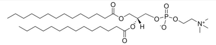 Dimyristoyl phosphatidylcholine CAS 18194-24-6
